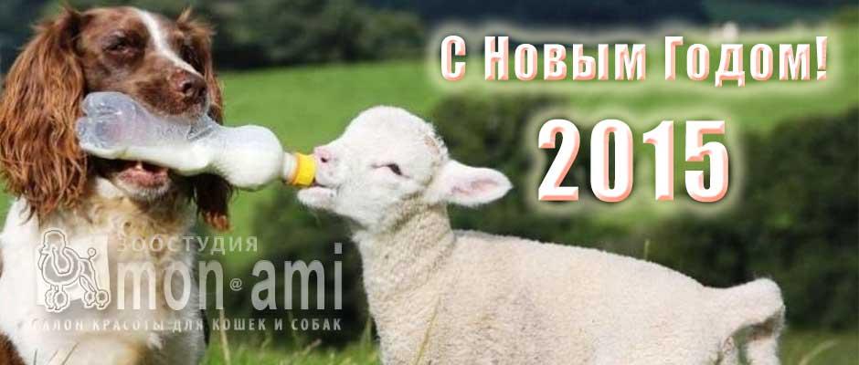 Поздравляем с новым 2015м годом!